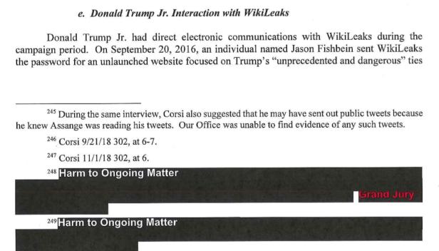 059_DonJr_Wikileaks
